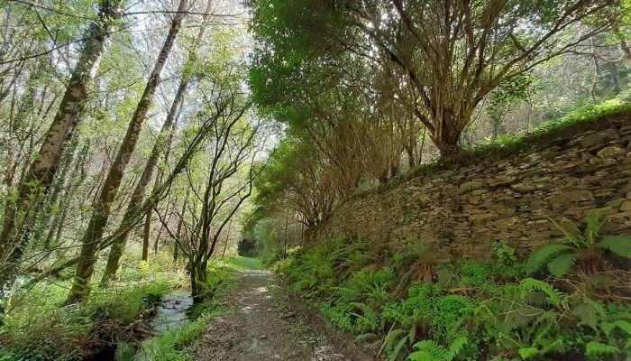 Qué ver en A Mariña Lucense: 8 propuestas para este 2021 - Ruta do Muiñeiro Namorado